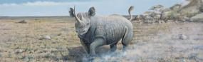 Charging Rhino  Rear Window Graphic