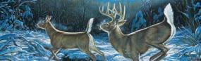 Midnight Run-Deer Rear Window Graphic