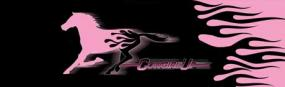 Cowgirl Up Flame Horse Pink Rear Window Graphic