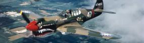 World War II Plane Rear Window Graphic