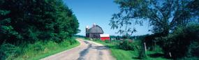 New York Farm Road Rear Window Graphic
