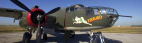 B-25 Tondelayo Liberator Rear Window Graphic