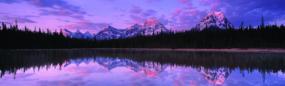 Jasper National Park Rear Window Graphic