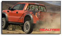 Realtree Rear Window Graphics